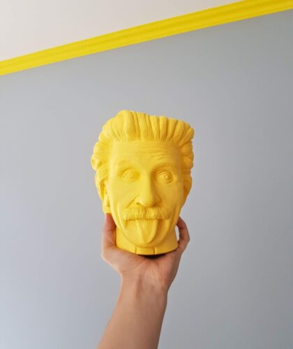 голова эйнштейна в руке
