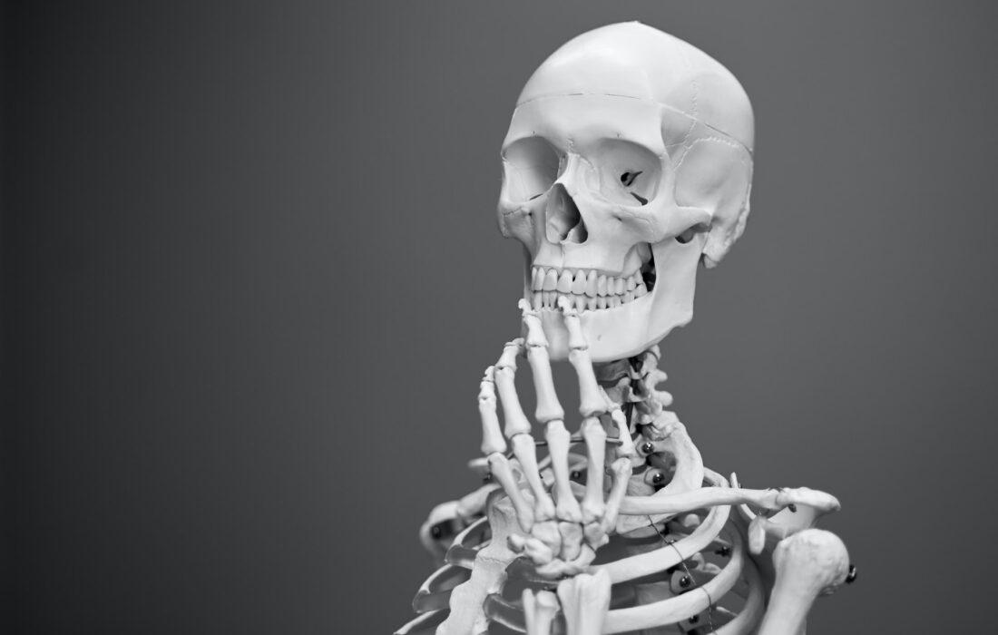 задумчивый скелет