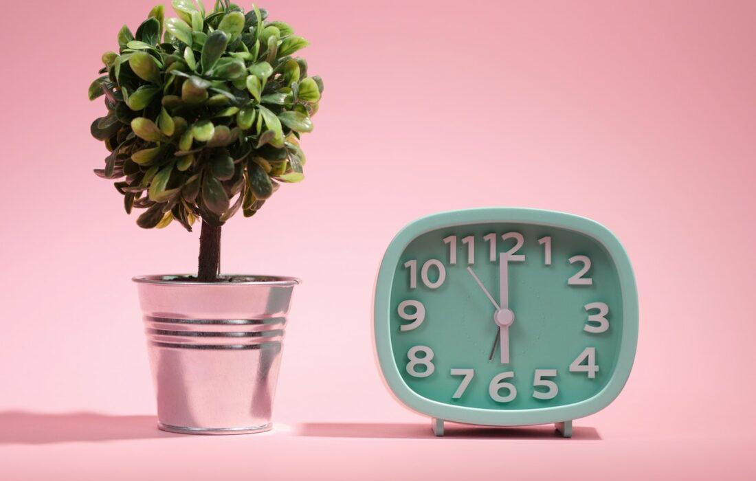 часы и деревце