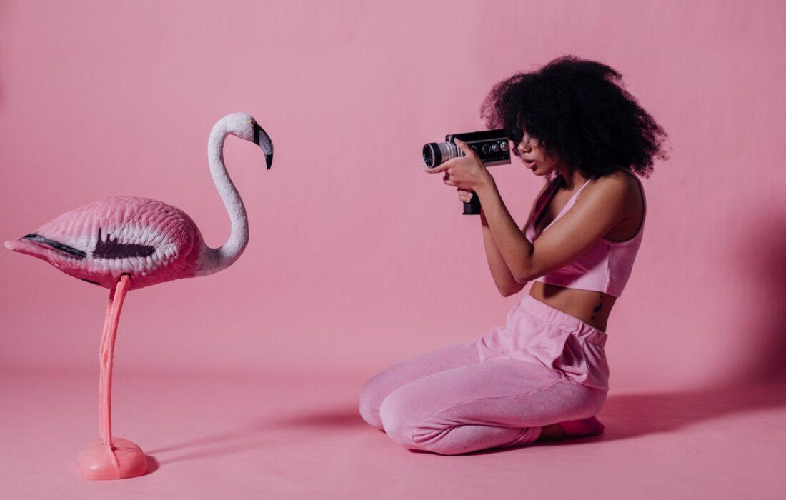 девушка фотографирует птичку
