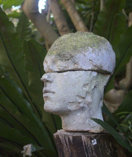 гипсовая голова