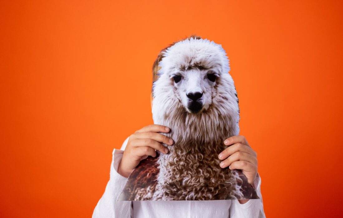 девушка держит фото овцы