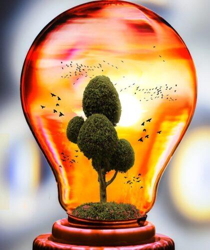 дерево в лампочке