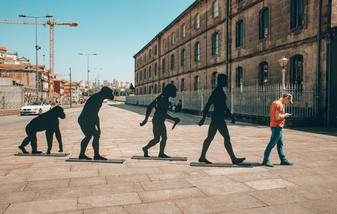 статуи обезьян и человек