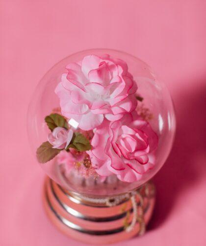 цветы в колбочке