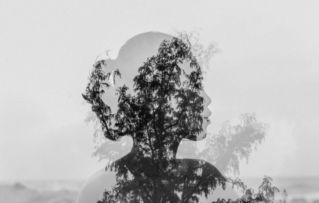 арт девушки и деревьев