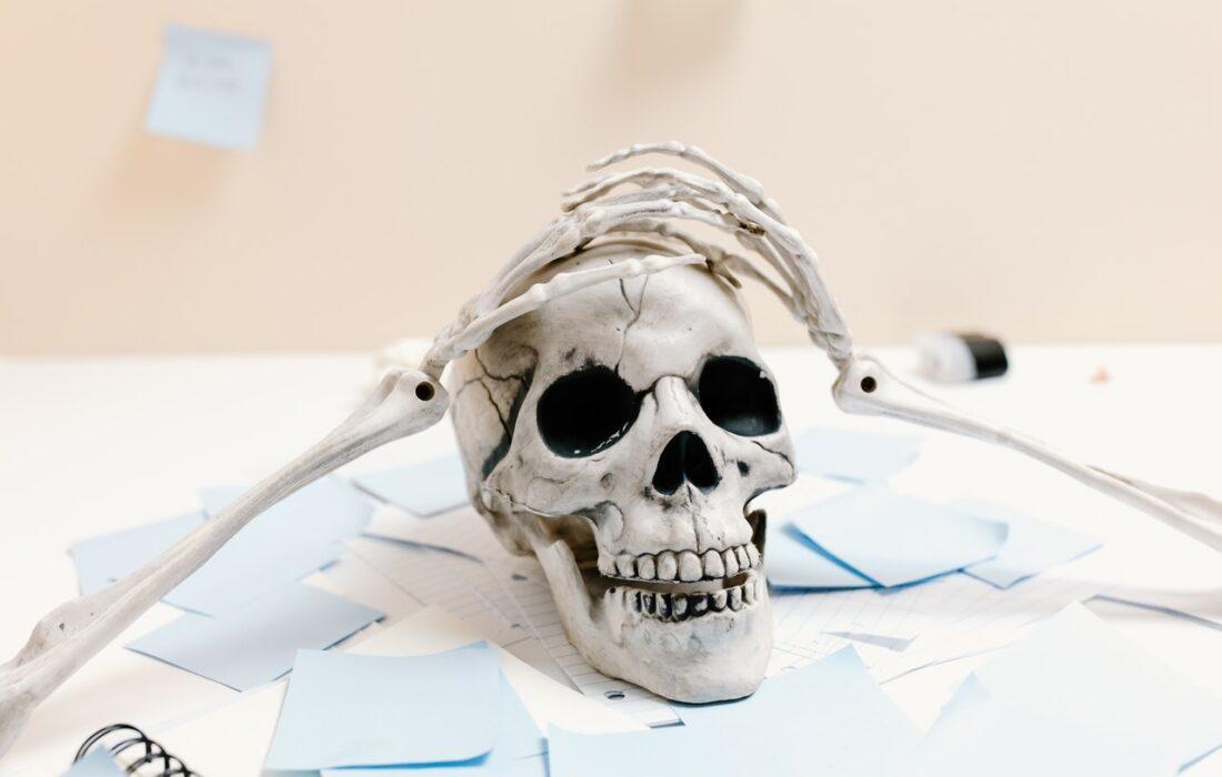 череп держится за череп