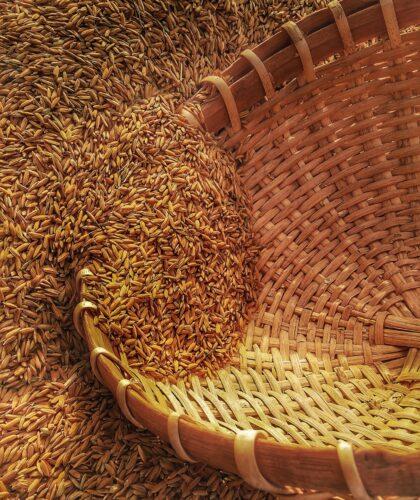 зерна и корзина